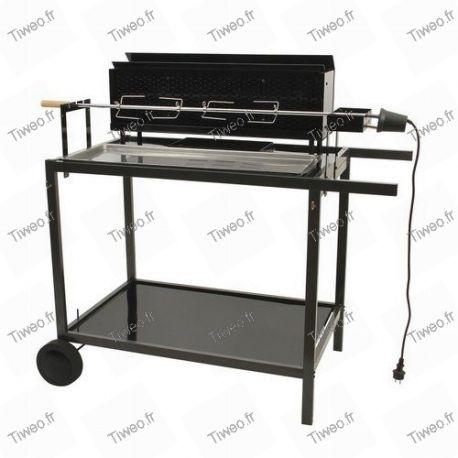 Wood and charcoal roasting pan