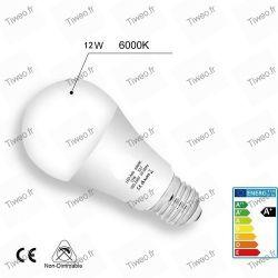 Ampoule LED E27 12W équivalent 100W blanc froid