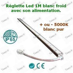 Réglette LED blanc froid alimentation 12V fournie