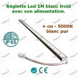 Tira de LED blanco frío Fuente de alimentación de 12V incluida